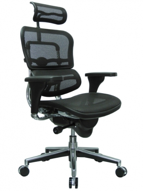 Best Ergonomic Office Chair Eurotech Ergohuman Mesh Photo 97