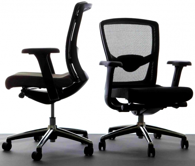 Ergonomic Desk Chairs For Office And Home Furniture Aeron Star Mesh Ergonomic Office Chair Pictures 29