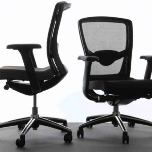Ergonomically Correct Chair