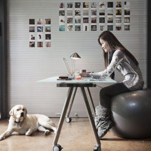 Yoga Ball Office Chair