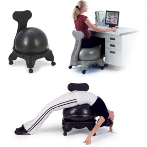 Balance Ball Office Chair